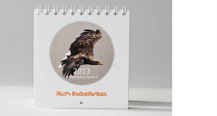 p-67-kalender2013-titel-seeadler