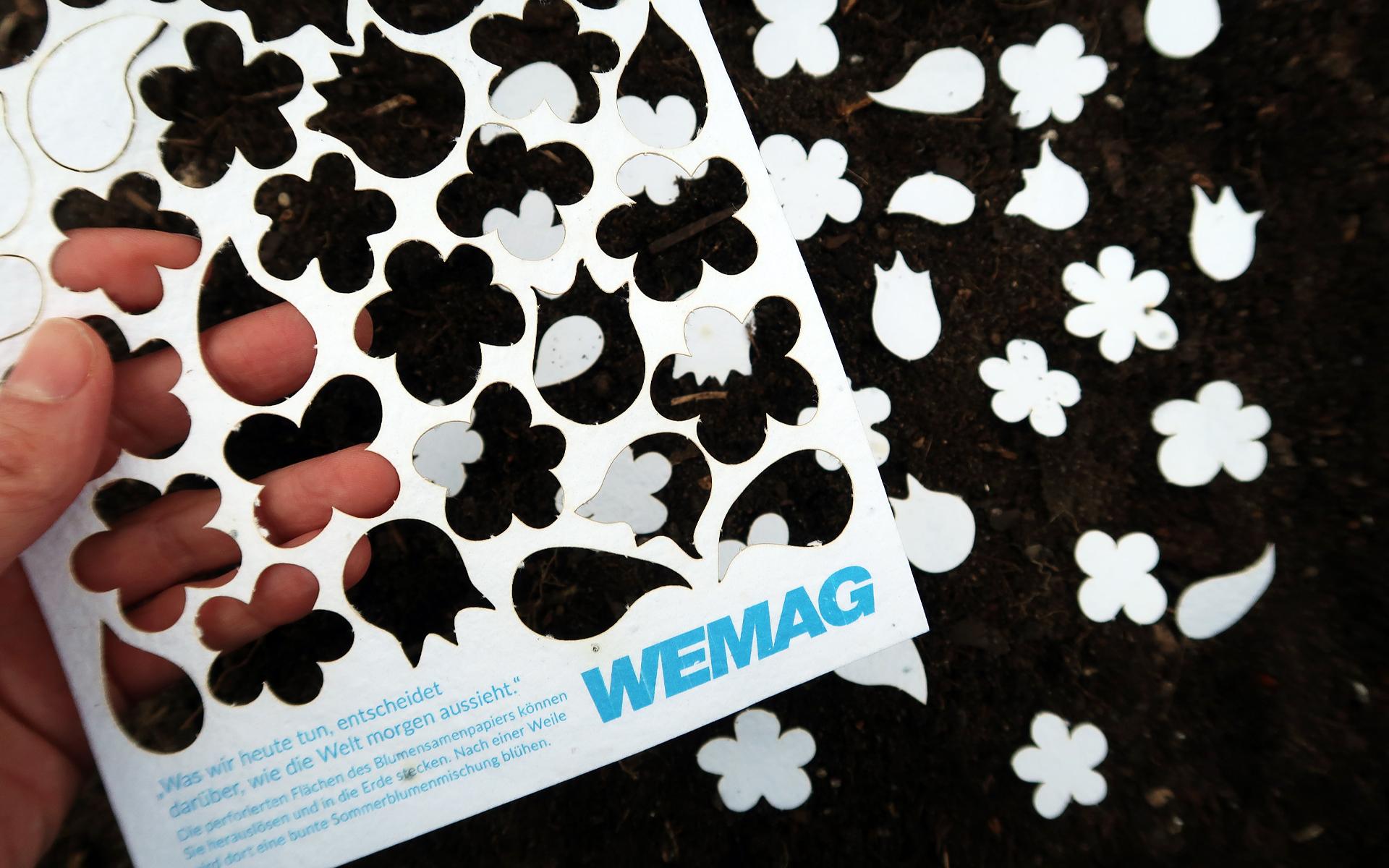 wemag_nb-2019_blumensamenpapier2